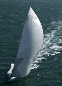 Wild Thing Yachting